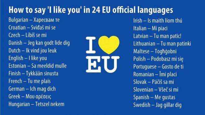 Celebrating language diversity